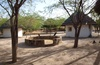 Vign_tchad_hebergement_camp_de_brousse_alkouk_23_