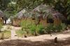 Vign_tchad_hebergement_camp_douguia_4_