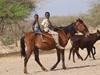 Vign_tchad_sejour_mars_2011_215_