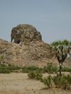 Vign_tchad_voyage_de_chasse_au_tchad_19_