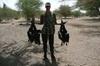 Vign_tchad_voyage_de_chasse_au_tchad_zone_de_douguia_16_photoredukto