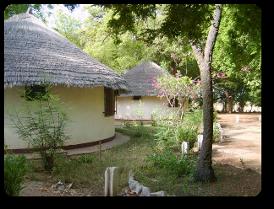 pt_tchad_tchad_voyage_de_chasse_au_tchad_71_photoredukto
